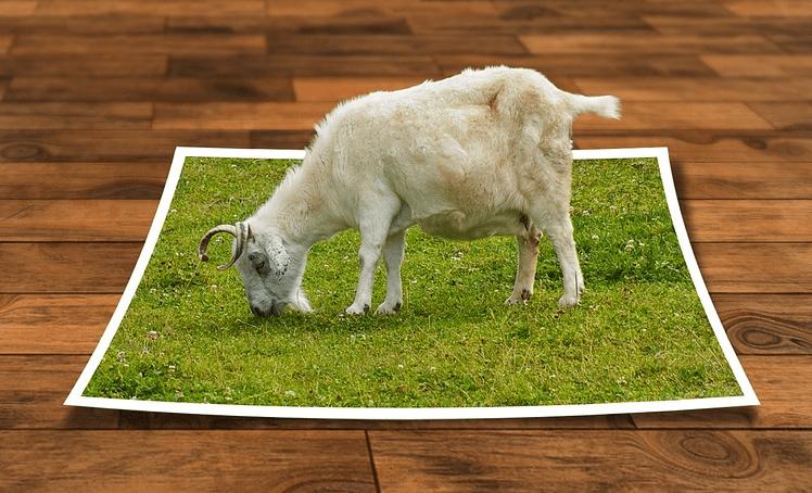 I 10 Migliori Programmi di Stampa 3D per Windows e Mac